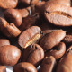 Coffee Grains Falling - VideoHive Item for Sale