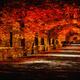 Autumn Park - PhotoDune Item for Sale