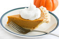 Holiday Pumpkin Pie Slice - PhotoDune Item for Sale