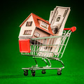 shopping cart and house - PhotoDune Item for Sale