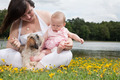 Sweet little family - PhotoDune Item for Sale