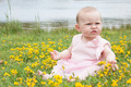 Baby is playing with the flowers - PhotoDune Item for Sale