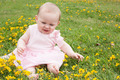 Baby's fun with buttercups - PhotoDune Item for Sale