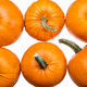 six pumpkins on white - PhotoDune Item for Sale