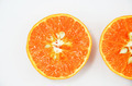Slice of Orange - PhotoDune Item for Sale
