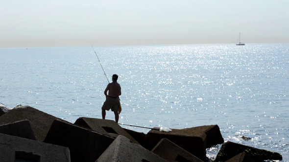 Fisherman Throws Bait into the Sea