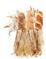 Watercolor Image Of Bread Loaves - PhotoDune Item for Sale