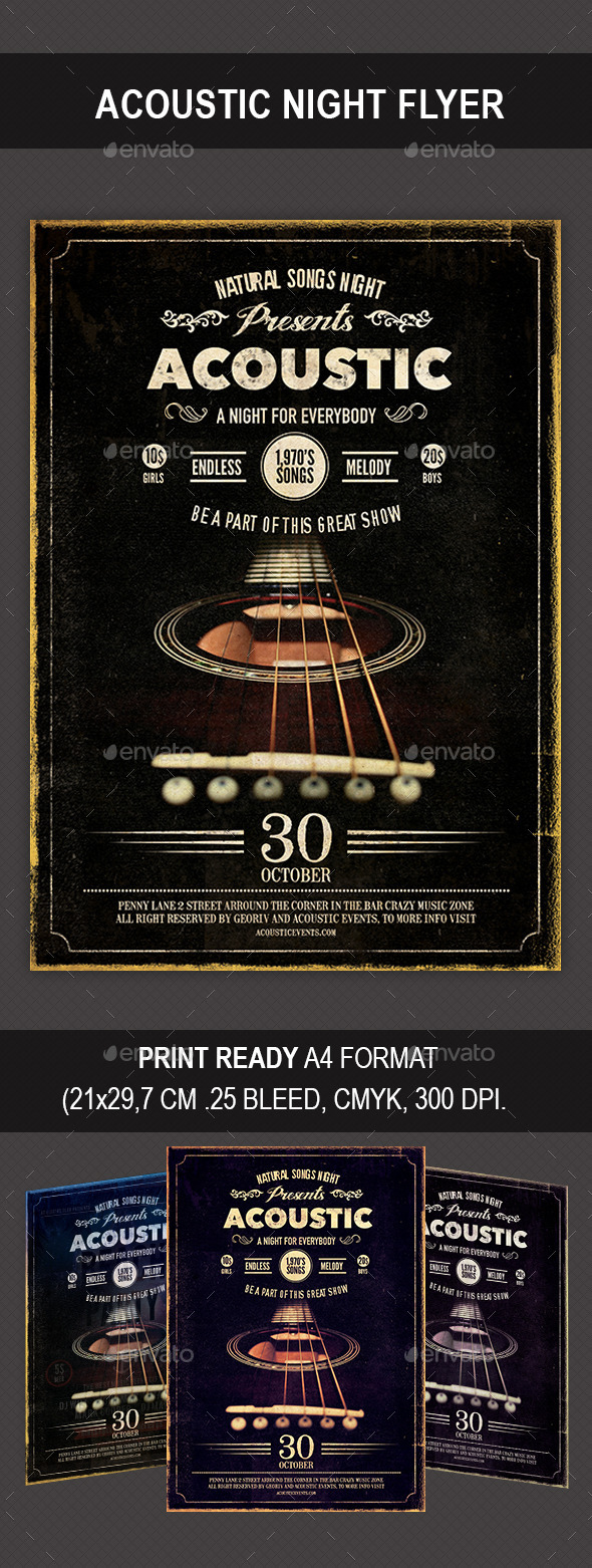 GraphicRiver Acoustic Night Flyer 9031344