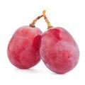 Red grape - PhotoDune Item for Sale