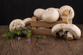 Champignons in a wooden box - PhotoDune Item for Sale