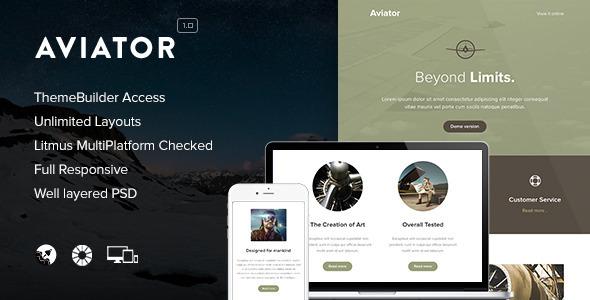 Aviator Responsive Email & Themebuilder Access