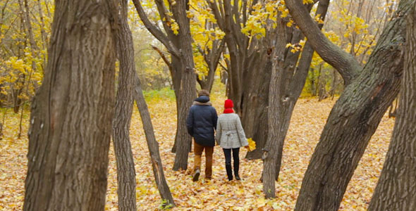 Romantic Date in the Park