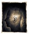 Hearing - PhotoDune Item for Sale