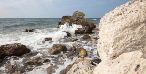 Sea Coast 12