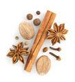 cinnamon sticks, anise star and nutmeg - PhotoDune Item for Sale
