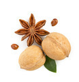 walnuts and anise star on white - PhotoDune Item for Sale