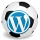 Soccer Engine - WordPress Plugin