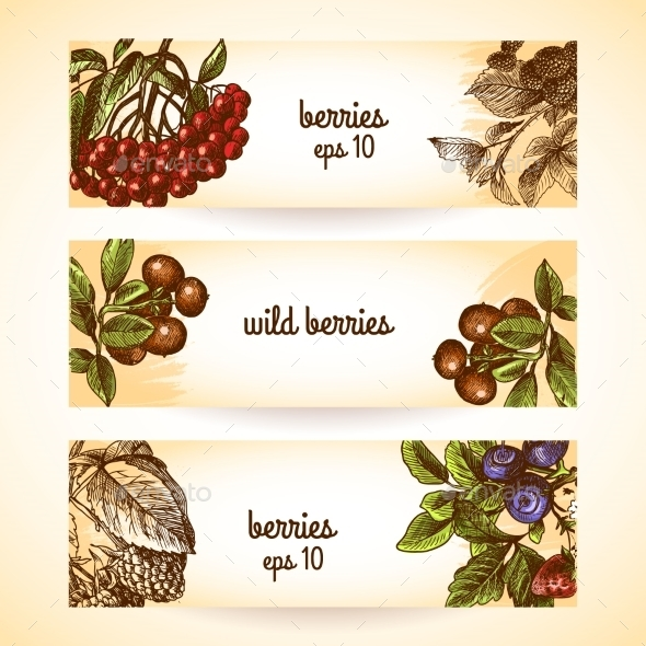 GraphicRiver Berry Banners 9071053