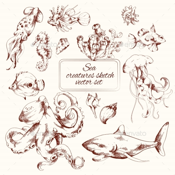 GraphicRiver Sea Creatures Sketch 9071065