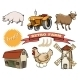 Set of Retro Farm Vector Icons - GraphicRiver Item for Sale