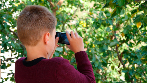 Boy Taking Picture Of Nature