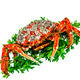 Spider Crab - PhotoDune Item for Sale