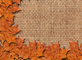 pattern with yellow leaves on the sacking - PhotoDune Item for Sale