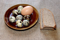 some eggs of the quail and hen with pieces of bread - PhotoDune Item for Sale