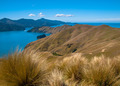 French Pass at Marlborough Sounds, South Island, New Zealand - PhotoDune Item for Sale
