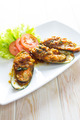 Fried mussels with tomatoes sauce - PhotoDune Item for Sale