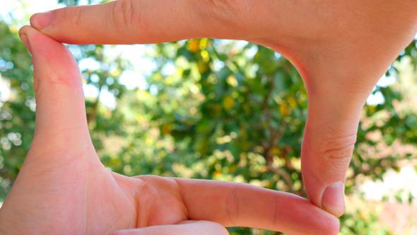 Hands Join Together To Make Finger Framing