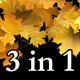 Autumn Leaves Transition - VideoHive Item for Sale