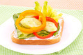 Sandwich with rusk and vegetables - PhotoDune Item for Sale