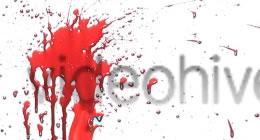 Blood, Flesh and Brain Movie Splashes