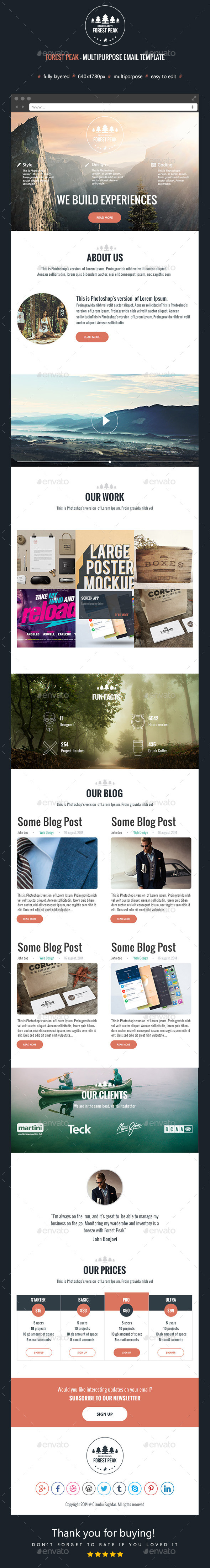 GraphicRiver Forest Peak Multipurpose Email Template 9107107