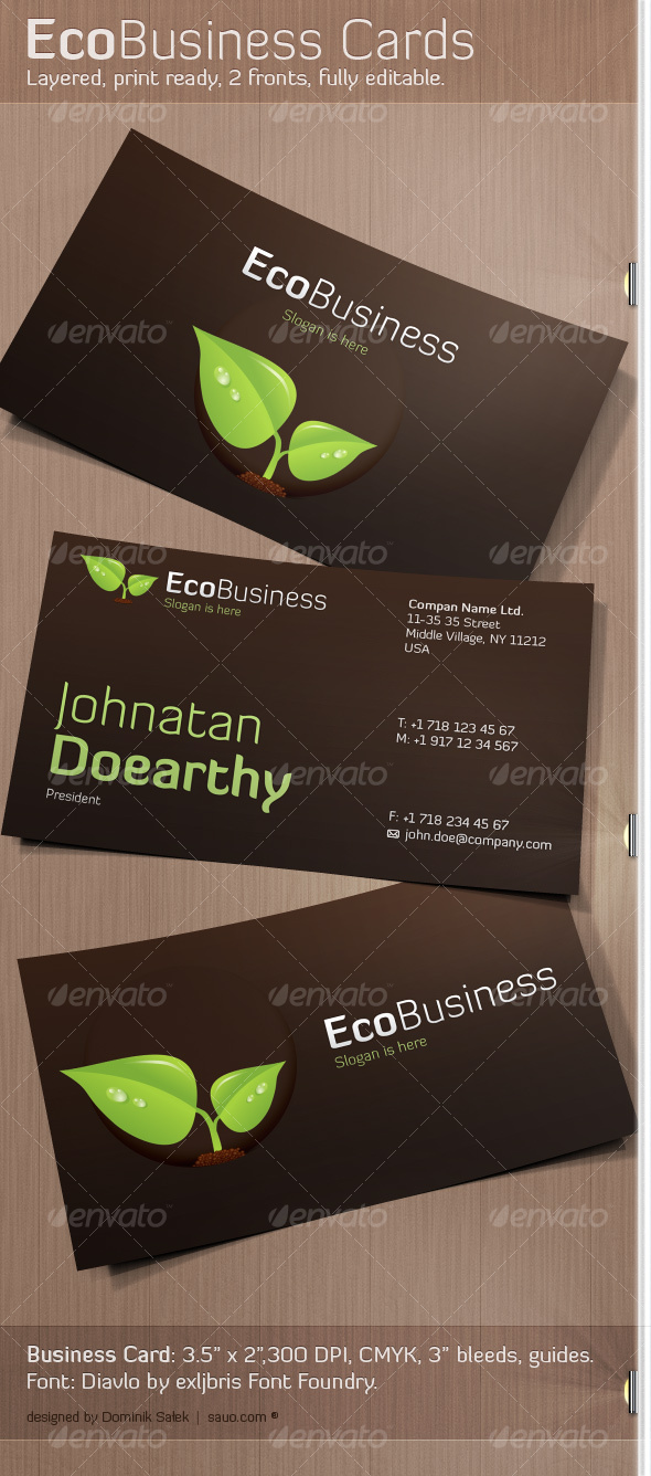 GraphicRiver EcoBusiness Card 116019