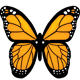 Monarch Butterflies - GraphicRiver Item for Sale