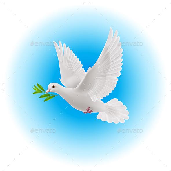 GraphicRiver Dove of Peace 9115543
