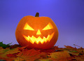 Halloween pumpkin on leaves - PhotoDune Item for Sale
