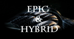 Epic&Hybrid