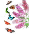 Watercolor Image Of Butterfly Bush - PhotoDune Item for Sale