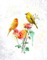 Watercolor Image Of Flowers And Birds - PhotoDune Item for Sale