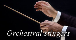 Orchestral Logos and Stinger