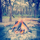 Campfire In Forest Instagram Style - PhotoDune Item for Sale