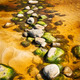 Stepping Stones - PhotoDune Item for Sale