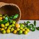 Lime in wicker basket - PhotoDune Item for Sale