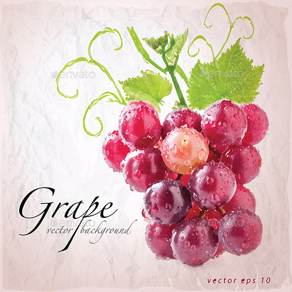 GraphicRiver Red Grapes 9132368