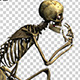 Skeleton Funny Street Dance Routine 1 - VideoHive Item for Sale