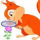 Curious Squirrel - GraphicRiver Item for Sale