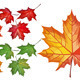 Detailed Set with Maple Leaves - GraphicRiver Item for Sale